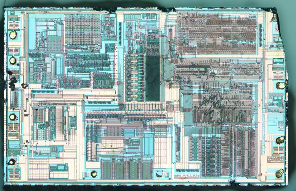 A high-resolution composite DIC image showing the entire die.